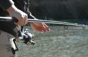 fishing conwy water gardens